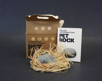 Vintage Pet Rock 1970s Novelty Gift in Original Packaging (E8794)