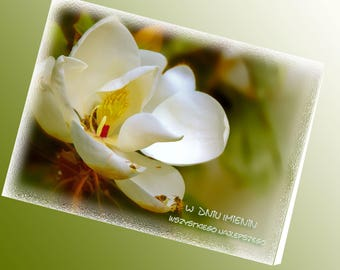 Kartka Imieninowa, Magnolia na Imieniny, Polish Name Day Card, Polish Card, Polish Poem, Polski Wiersz