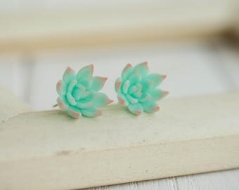 Blue Pink Succulent Planter Stud Earrings Wholesale Small Hypoallergenic Studs Earstuds Succulent Plants Jewelry Wedding Birthday Bridal