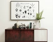 "Animal Tracks Print |  11"" x 14"" Illustration 