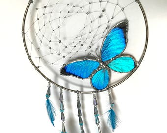 Butterfly Dream Catcher with Real Preserved Blue Morpho Butterfly Decor Piece