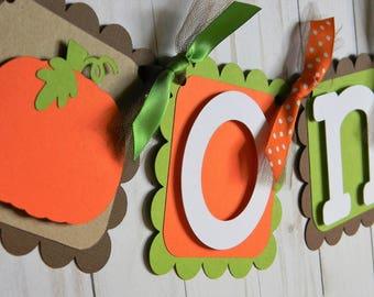 Pumpkin High Chair Banner, Pumpkin Banner, Pumpkin Birthday Party, Pumpkin First Birthday, Boy Pumpkin Banner, Pumpkin ONE Banner
