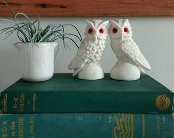 White Chalk Owl Figurine Set of 2