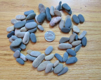 Lot of 60 Hand Selected Oblong Oval Beach Stones Stone and Rock Craft Supplies