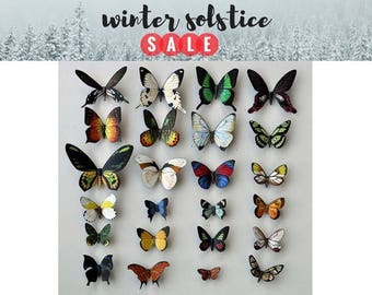 Butterfly Magnets, Set of 24, Insects, Refrigerator Magnets, Kitchen Magnets, Handmade