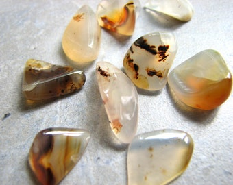 Polished Agates for Jewelry and Crafts, Translucent White and Brown, Undrilled Small Tumbled Stones