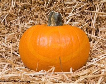 Pumpkin on Golden Hay Photo, Stock Image, Instant Download, Stock Photography, Halloween Clipart, Halloween Photo, Pumpkin Clipart