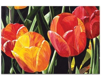 Traditional Wall Art 'Tulip Field' by Cathy Pearson - Floral Decor Traditional Tulips Artwork on Metal or Plexiglass