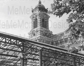 Ellis Island the Destination of a Long Journey