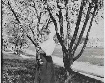 Old Photo Woman Smelling Flowers on a Tree wearing Long Skirt 1910s Photograph Snapshot vintage