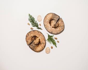 Antler West Coasters - Wood Coasters - Driftwood Engraved Coasters - Sustainable Gift - West Coasters - Wood - Eco Houseware