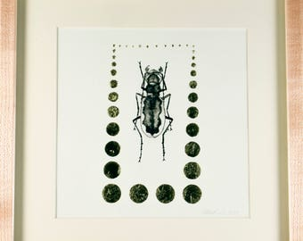 Original Painting of Beetle / Ink and Gold Leaf / Framed in Maple