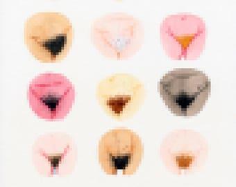 Pubic Hair Paradise • Original Illustration • The Vulva Gallery