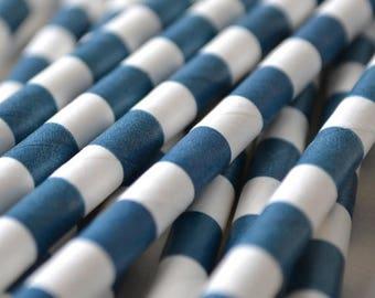 Navy Circular Striped Paper Straws