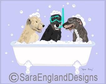 Spa Day - Irish Wolfhound