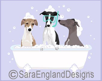 Spa Day - Italian Greyhound