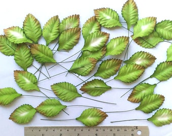50 pc Mulbery Paper Rose Leaves  Green Color Size 40mm x25 mm with 2  inch Long stemScrapbooking Embellishment