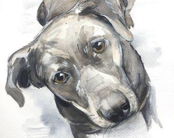 Custom pet portrait, dog, dog portrait, cat portrait, custom pet painting, animal painting, dog watercolor, watercolour dog portrait
