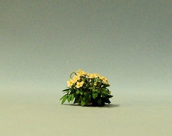 1/2 inch scale miniature-Christmas Rose