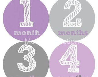 Monthly Baby Stickers Baby Month Stickers Baby Girl Month Stickers Monthly Photo Stickers Monthly Milestone Stickers 215