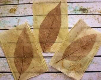 Hand made dried skeleton leaf paper, set of 3