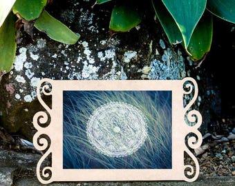 "8""x10"" Mandala and Sea Grass Print, Nature Wall Art, Beach Photographic Print"