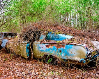 1964 Blue Plymouth Barracuda in the Woods Photograph