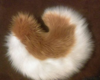 Caramel and White Husky Tail