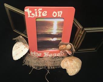 Life on the beach