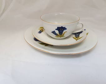 Vintage//Seltmann Meadows//cup and dish//blue purple flower//Hightea//tea cup//brocante//English style//tea//gift//Bavaria