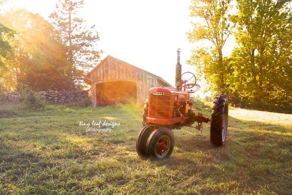 Farmall in the Sun Original Photography 5x7 8x10 11x14 Prints 8x10 11x14 16x20 Standouts