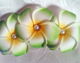 Clip barrette cheveuxverte 3 choice frangipani flowers