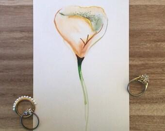 Delicate Print Rose Flower, Print, 4x6 inches, Artwork, Watercolor Print, Valentines Day, Pretty, Semi-Gloss/Matte Print, Beautiful