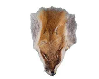 First Quality Red Fox Faces in lots of 1, 2, 5, 10, and 20 (19-04-06-SEL)