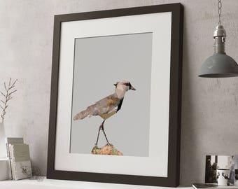 FRAMED Low Poly Geometric Bird Print, Black or White Frame, Modern Art