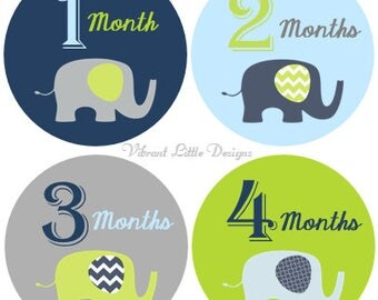 INSTANT DOWNLOAD- Digital Printable DIY Baby Month Stickers Design 29