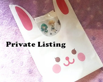 Private Listing - Usagi Birthday Special