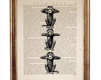 Three Wise Monkeys illustration, See No Evil, Hear No Evil, Speak No Evil Dictionary Art Print, Three Mystic Apes Art