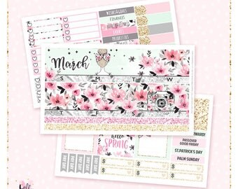 March Monthly View Sticker Kit (girly) - 3 sheets MATTE REMOVABLE paper / for the Vertical Erin Condren