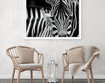 Large Wall Art Close Taken Zebra Canvas Print