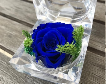 Navy blue preserved rose