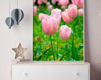 Tulip Photograph, Pink Tulip Wall Art, Floral Nursery Decor, Floral Photography, London Gardens Photograph, Home Decor, Wall Art, Pink Tulip