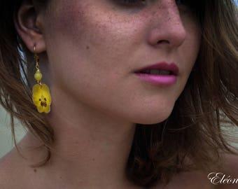 Earrings - flower of PANSY - 18k Gold plated- Citrine