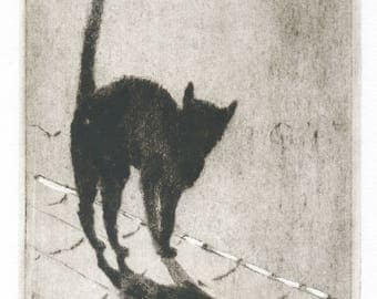 "Original engraving ""Director of the Moon"". Director of the moon. black cat. Paris.Lune moon. etching cats. printmsking cat."