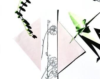 Flower drawing, carnation, illustration, vegetation, black white illustration, drawn by hand, original botanical card greeting wedding card