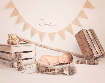 Digital Backdrop, baby, baby, newborn, newborn, digital backdrop - Digital Background - photo download