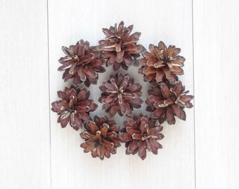 Natural pine cones,Pinus Silvestris,100% natural,4-6cm,christmas decorations,home decorations,rustic contry style,pine cones for decor