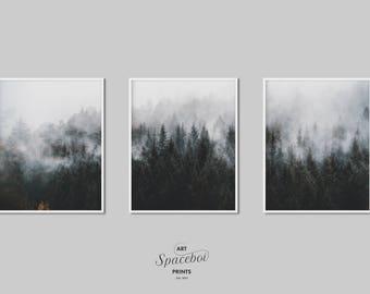 3 piece wall art landscape art forest print minimal misty fog