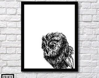 Owl Art, Wall Art Print, Owl Art Sketch, Owl Illustration Wall Art, Owl Sketch, Owl Animal Art, Owl Wall Decor, Owl Art, Owl Drawing Art