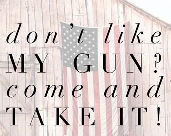 2nd Amendment - Pro Gun Vinyl Decal